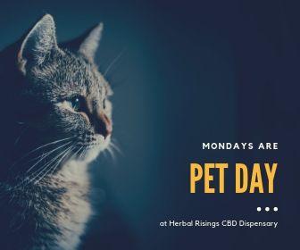 cbd pet discount herbal risings cbd dispensary