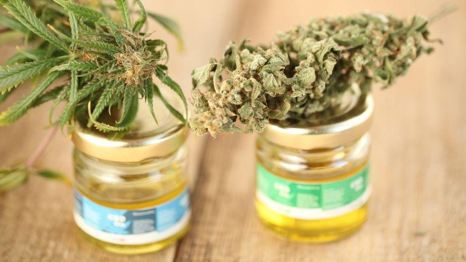 medicininė marihuana vaikams