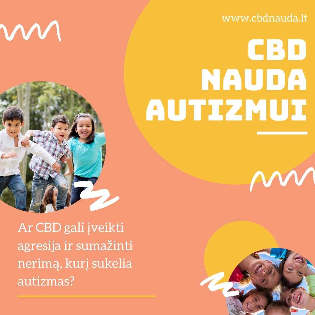 Autizmo sukeliamos agresijos ir nerimo valdymas
