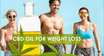 CBD Oil For Weight Loss – How to Lose Weight with CBD Oil