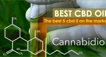 Top 5 Best CBD Oil For Sale on the Market in 2019