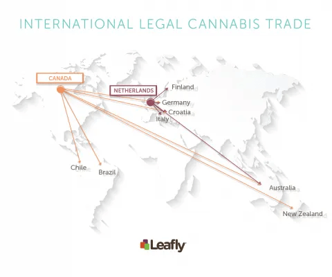 international legal cannabis trade