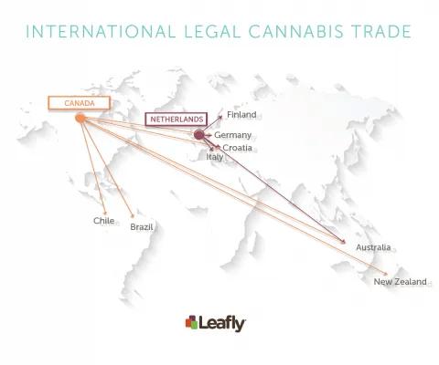 international legal cannabis trade