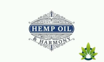 hemp oil and harmony