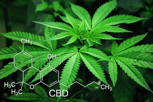 Cannabisblatt und eine Formel