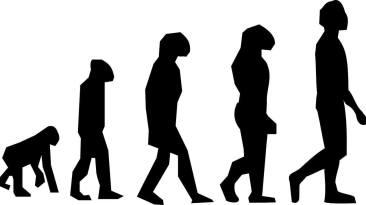 Dr. Bob and Evolution
