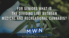 For Seniors What Is the Dividing Line Between Medical and Recreational Cannabis?
