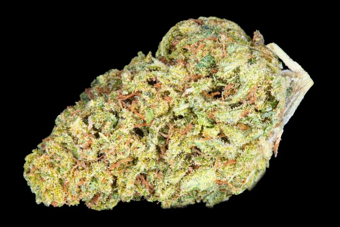 Lemon Drop Hemp Bud (empire wellness). One of July 2018 best selling CBD buds.
