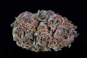 20% off Otto High Cbd Hemp Flower (Empire wellness)