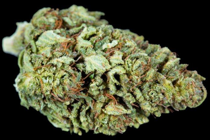 Smoking High-CBD Hemp Flowers - CBD Testers