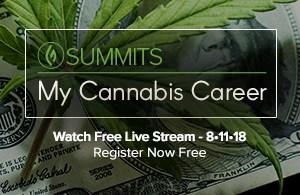 My Cannabis Career