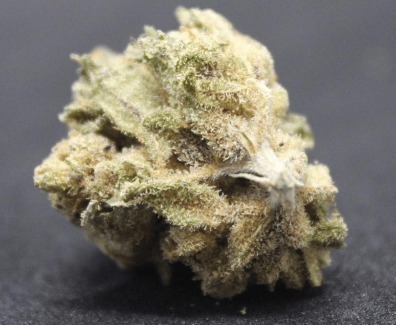 Amnesia hemp flower - UK