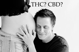 Cannabis and pregnancy: What men should know about THC and fertility?
