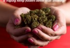 Is vaping hemp flowers better than smoking?