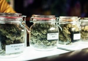 california cannabis businesses