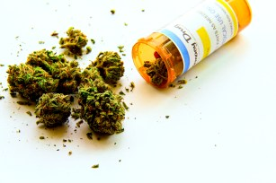 u.k. cannabis