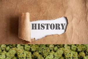 cbd history