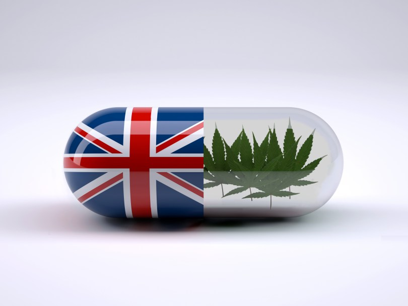 medical cannabis uk