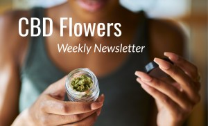 cbd flowers weekly