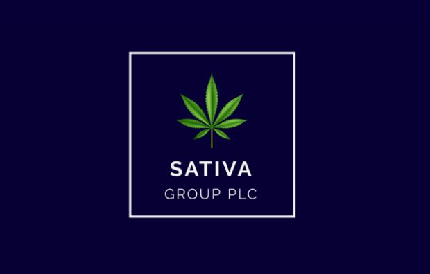 sativa group