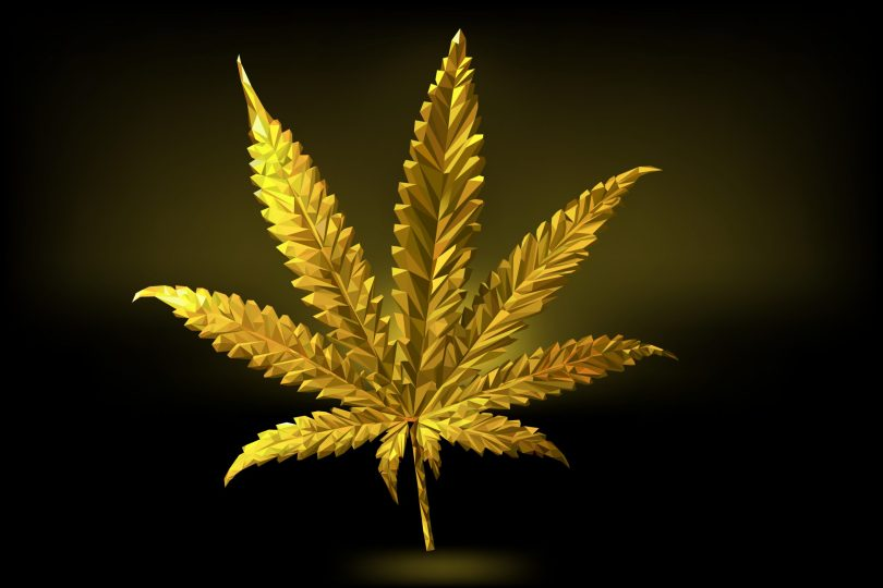 cannabis gold