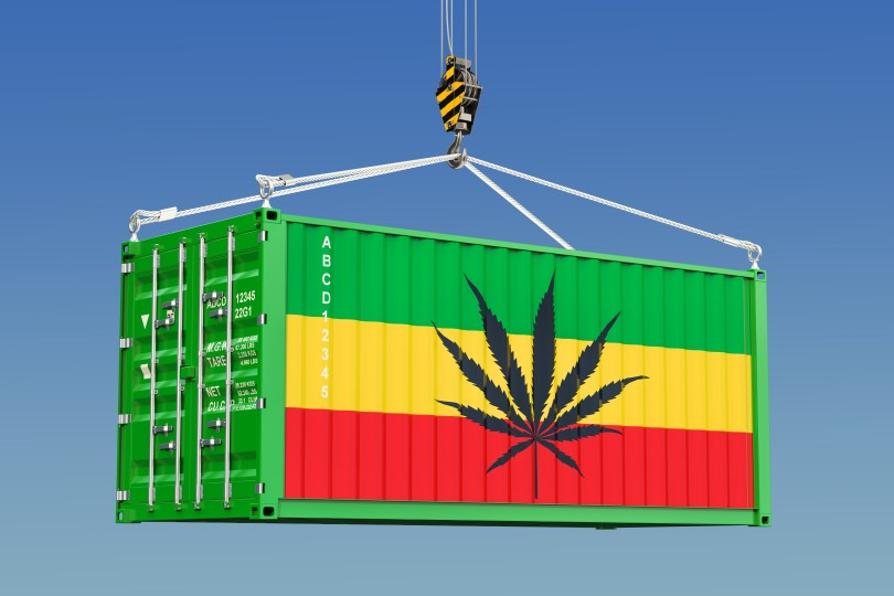 importing cannabis