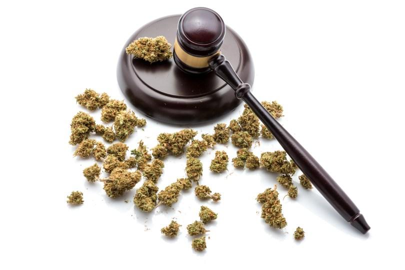 cannabis regulation