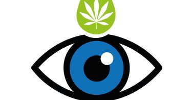 cannabis good for eyes