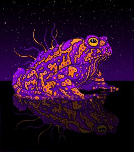 psychedelic toad