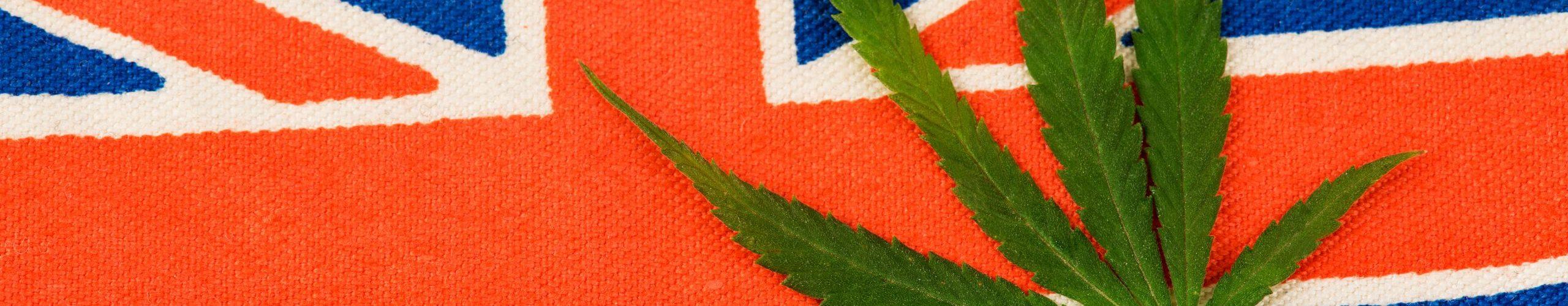 cannabis in UK