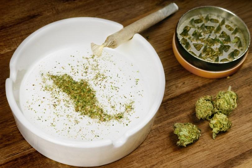 cannabis legislation Mexico