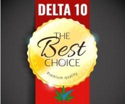 Best choice Delta 10