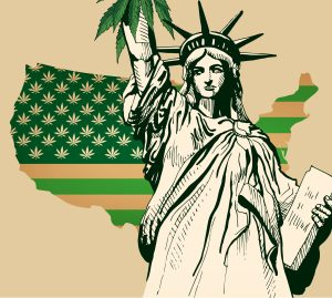 cannabis independence day