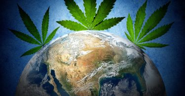 countries cannabis research