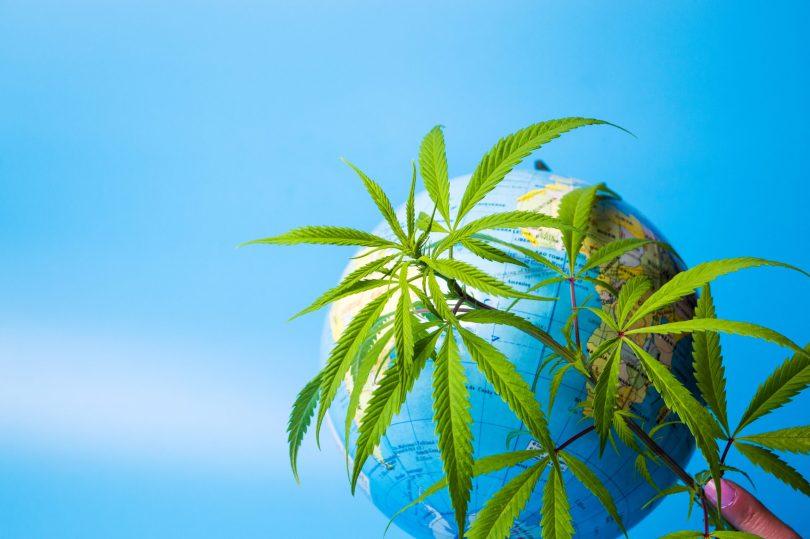 Uruguay cannabis tourism industry