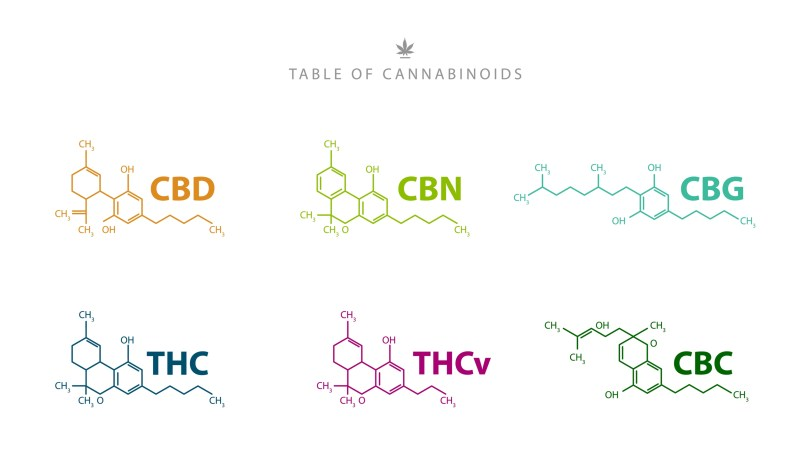 discovery of cannabinoids