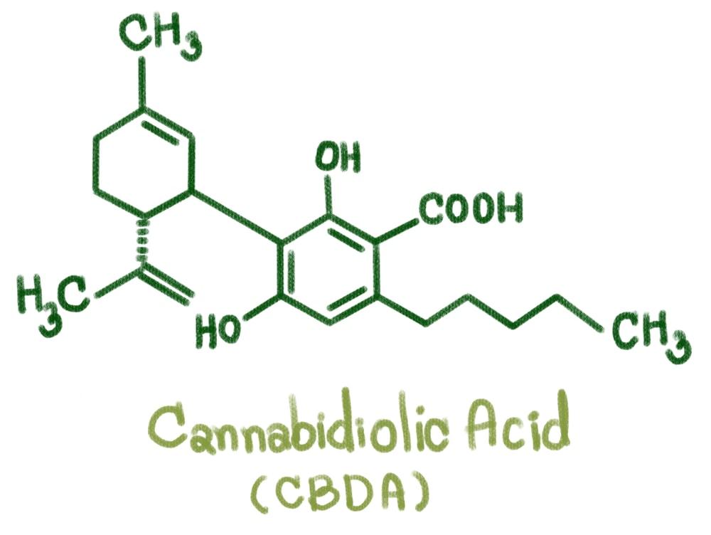 best-cbda-oil