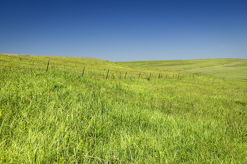 Kansas Prairie (Used with permission.)