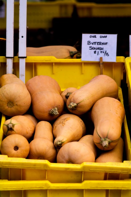 Butternut squash rs