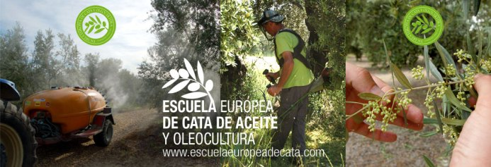 Fuente: www.escuelaeuropeadecata.com