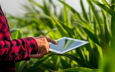 Agricultura moderna: cómo funciona y todas sus ventajas