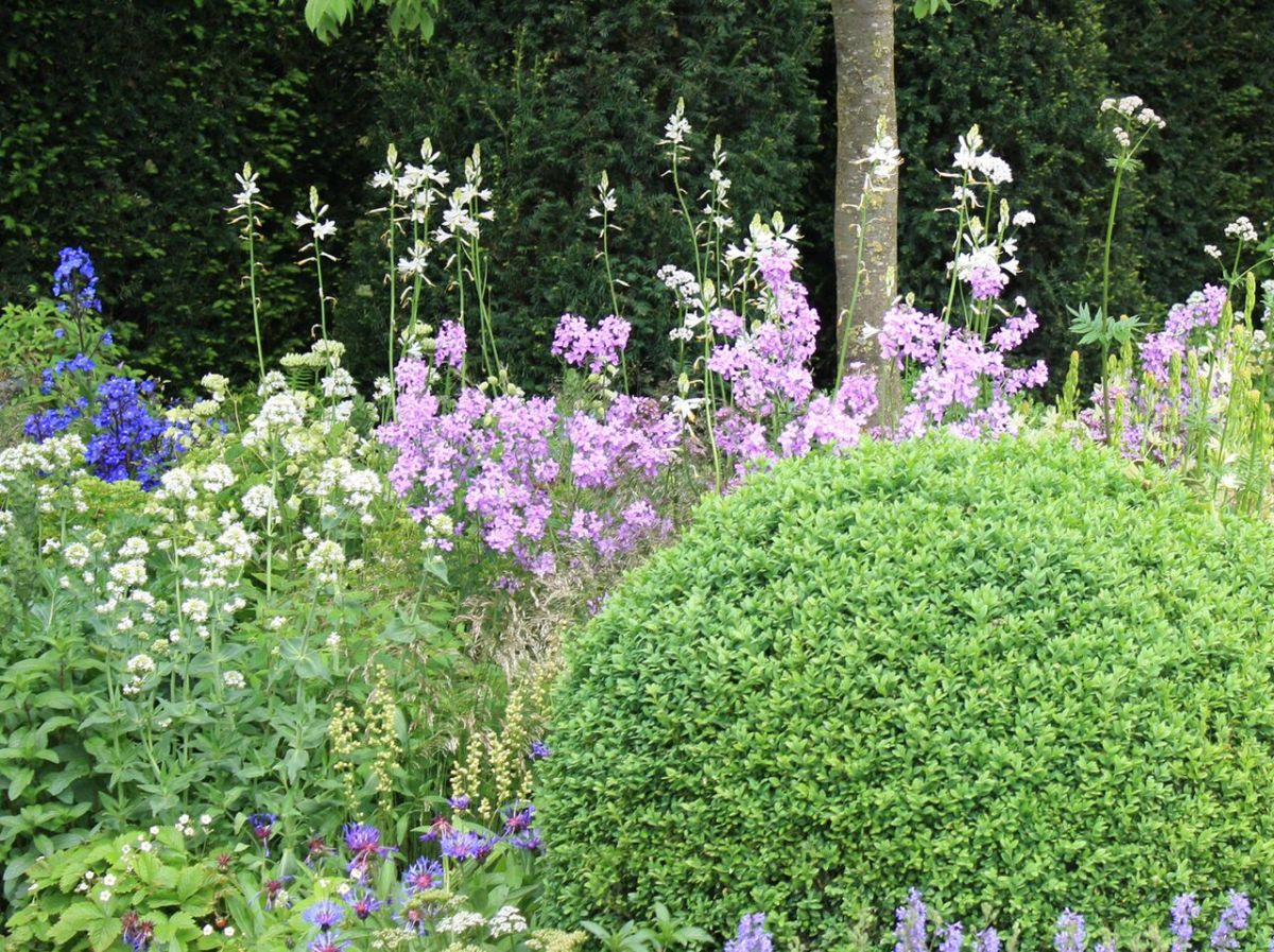 How to Add Structure to Your Garden with GRDN Design