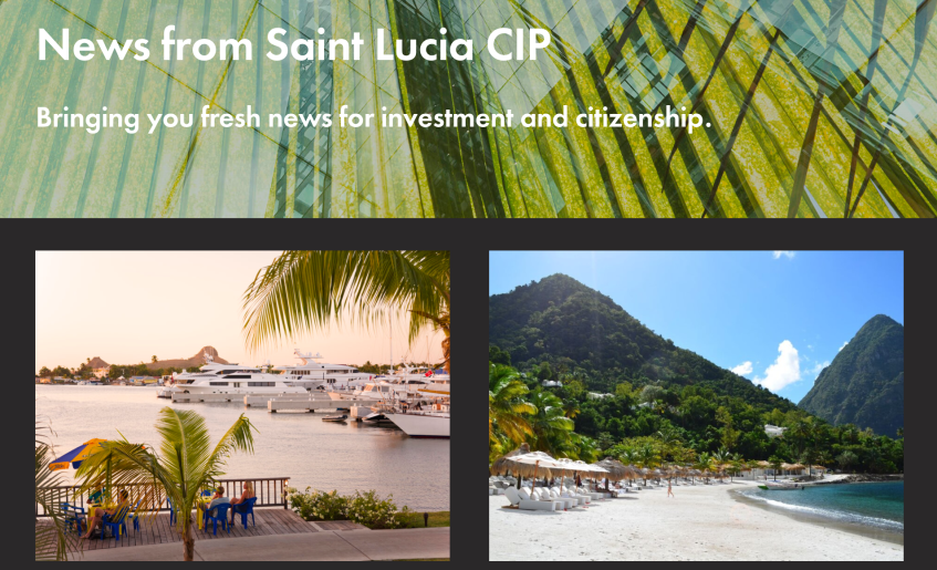 cip saint lucia website new