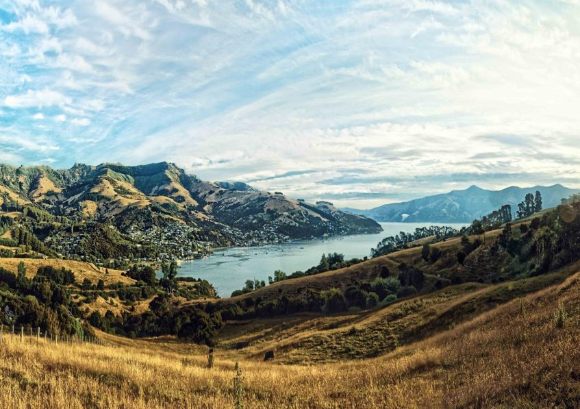 New Zealand lifestyle larry page residency