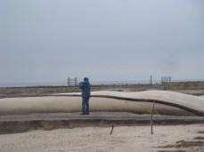 Galveston 09 014 (1)