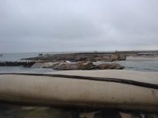 Galveston 09 017