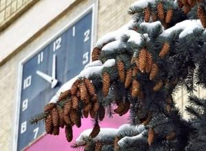 зима у Кропивницькому