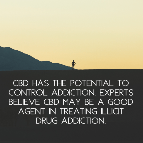 CBD can control and treat drug addiction