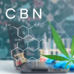 CBN - Sleepy Cannabinoid
