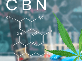 CBN - Sleepy Cannabinoid